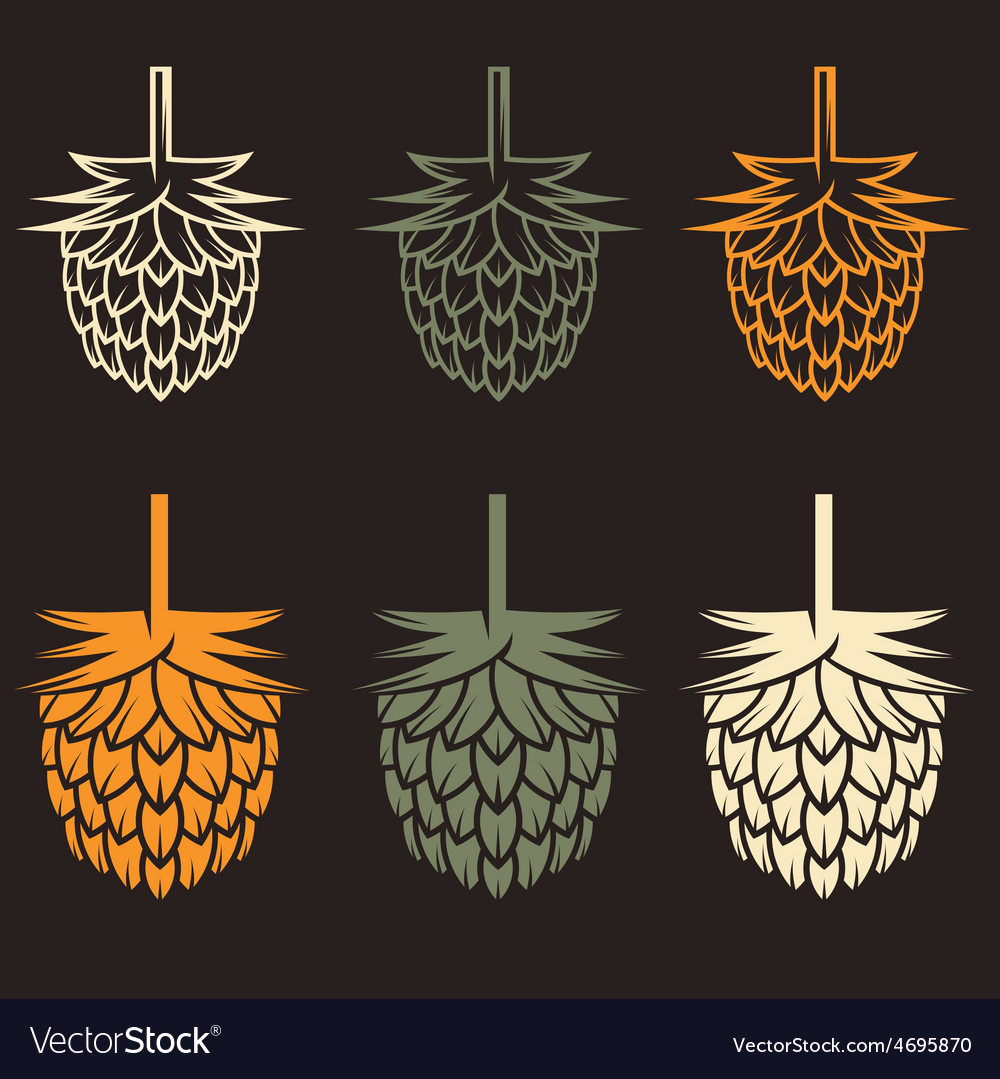 Hops design template vector | Price: 1 Credit (USD $1)