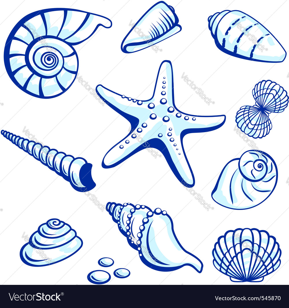 Starfishes cockleshells set vector | Price: 1 Credit (USD $1)