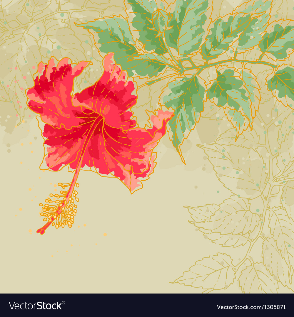 Hibiscus flower on toned background vector | Price: 1 Credit (USD $1)
