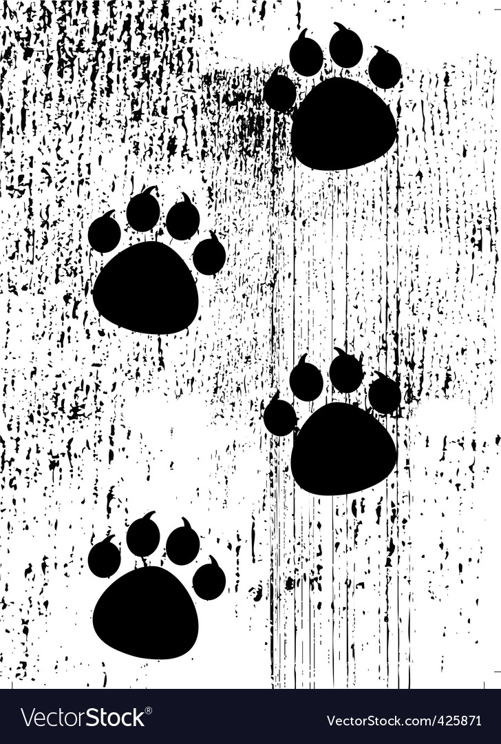 Paw prints on grunge background vector | Price: 1 Credit (USD $1)