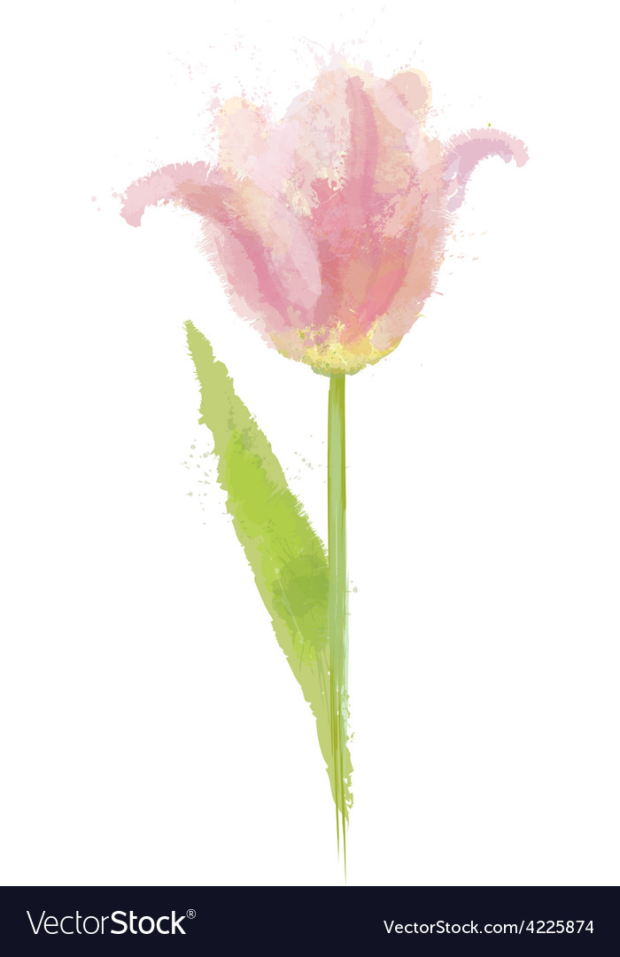 Pink tulip flower vector | Price: 1 Credit (USD $1)