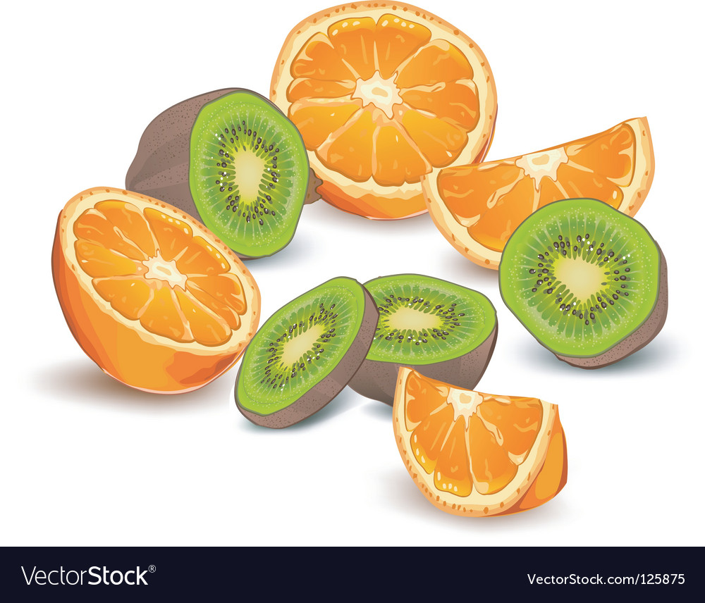 Orange and kiwi fruit vector | Price: 1 Credit (USD $1)