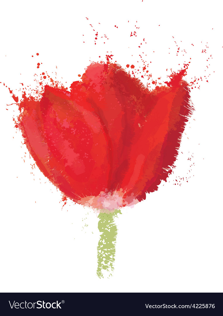 Red tulip vector | Price: 1 Credit (USD $1)