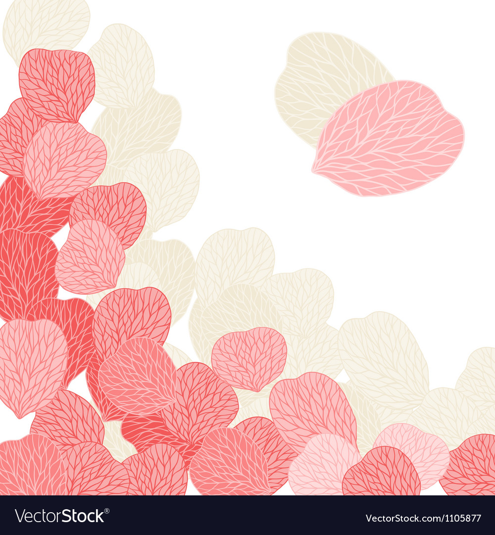 Background of pink flower petals vector | Price: 1 Credit (USD $1)