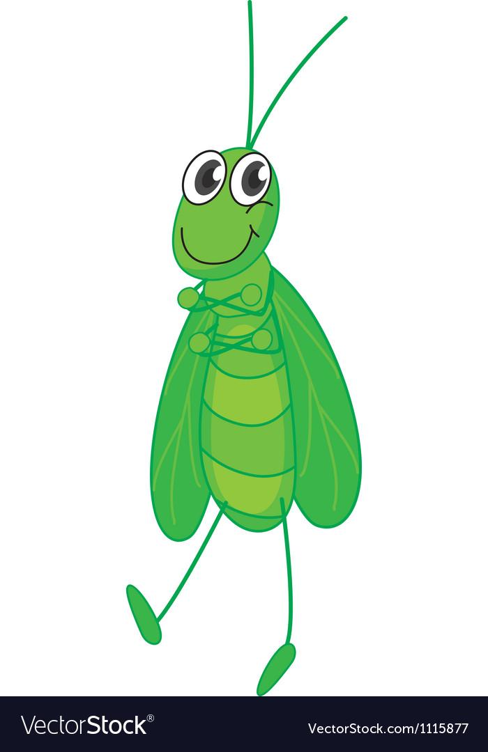 Grasshopper vector   Price: 1 Credit (USD $1)