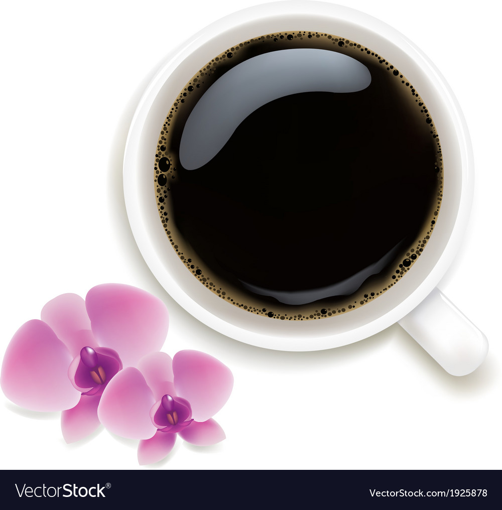 Cup of coffee with orchids vector | Price: 1 Credit (USD $1)