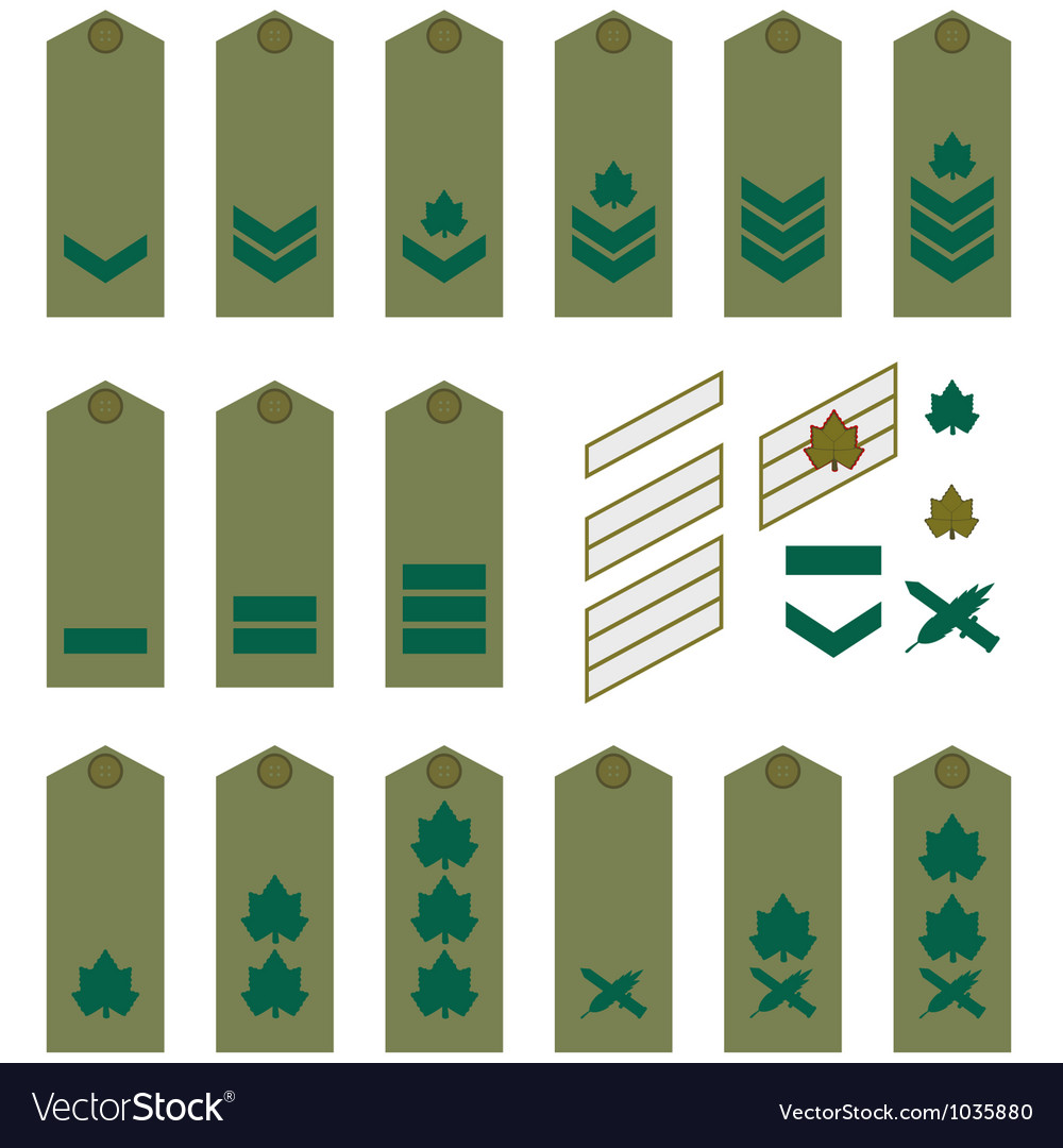 Israeli army insignia vector | Price: 1 Credit (USD $1)