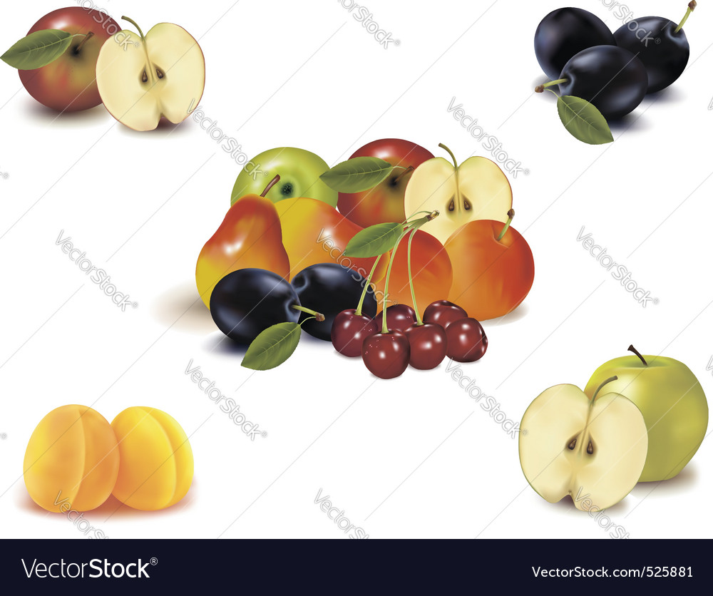 Big group with nine fruit vector | Price: 3 Credit (USD $3)