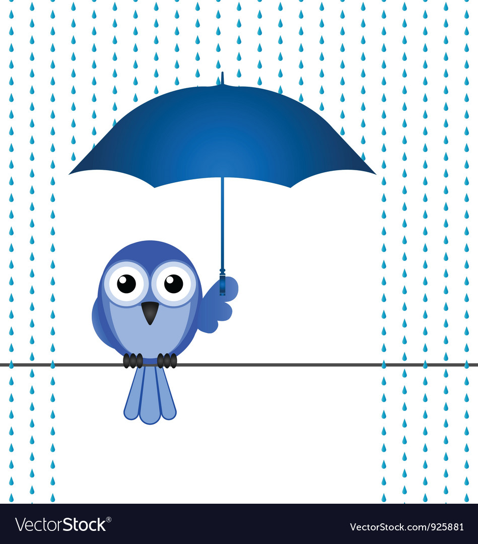 Bird rain vector | Price: 1 Credit (USD $1)