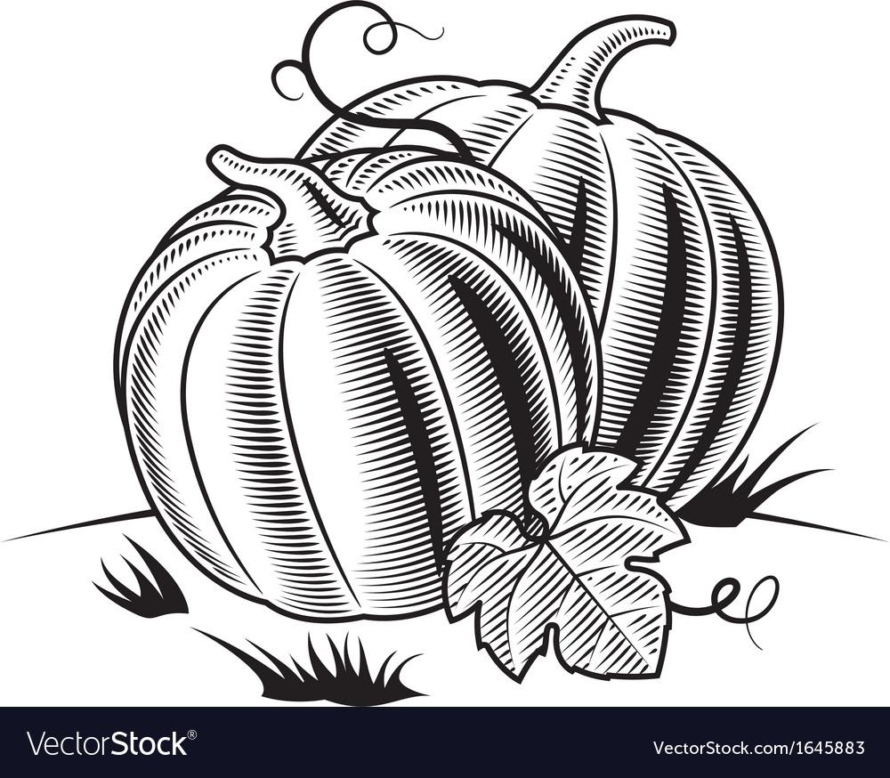 Retro pumpkins black and white vector | Price: 1 Credit (USD $1)