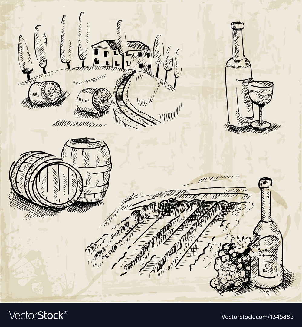 Wine winemaking and vineyard vector | Price: 1 Credit (USD $1)