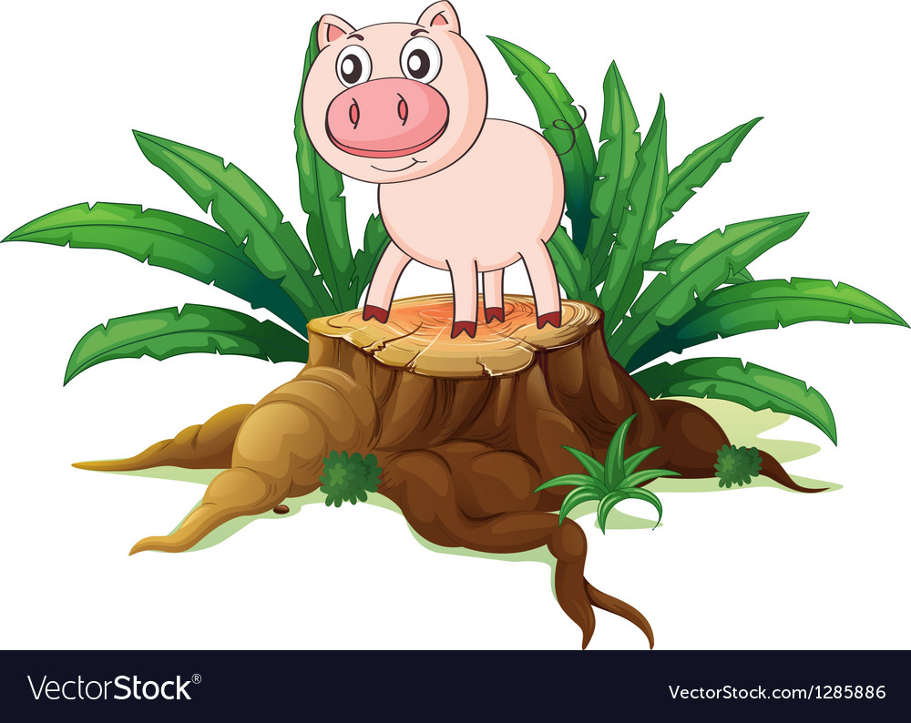 A pig above a trunk vector | Price: 1 Credit (USD $1)