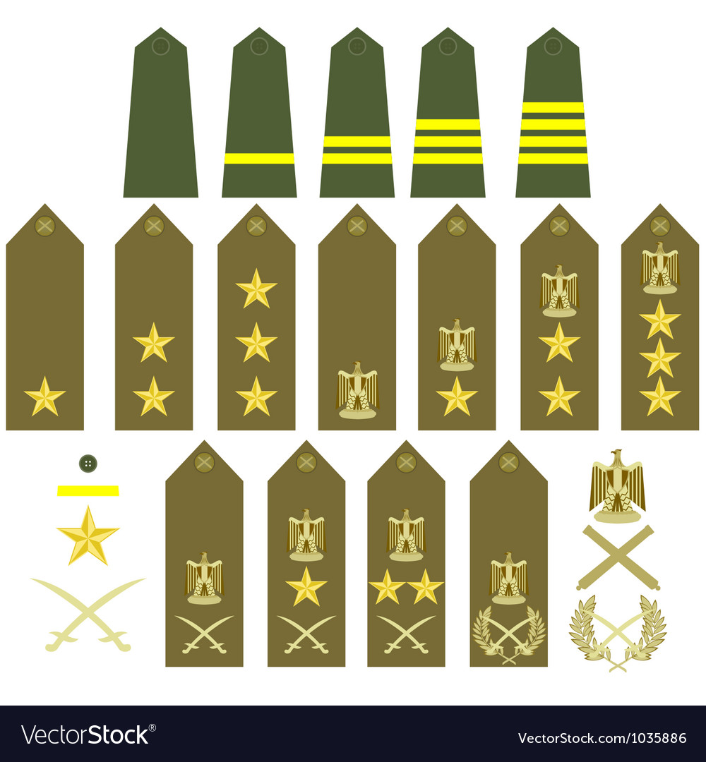 Egyptian army insignia vector | Price: 1 Credit (USD $1)