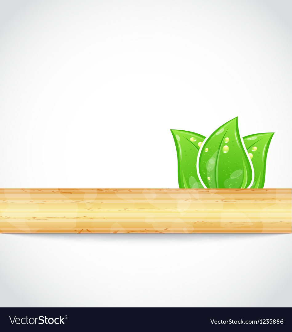 Natural background with eco green leaves and wood vector | Price: 1 Credit (USD $1)