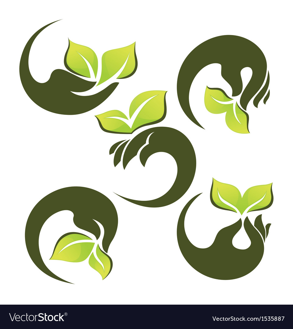 Hands and green leaves vector | Price: 1 Credit (USD $1)