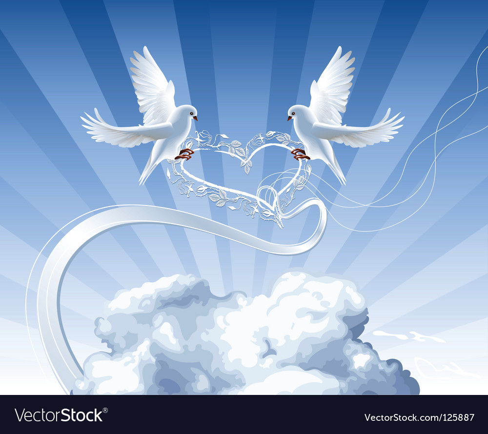 White doves with heart vector | Price: 3 Credit (USD $3)