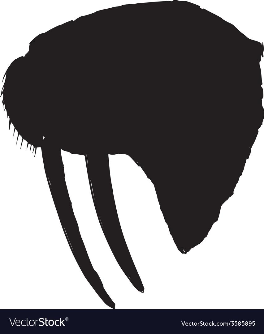 Walrus vector | Price: 1 Credit (USD $1)