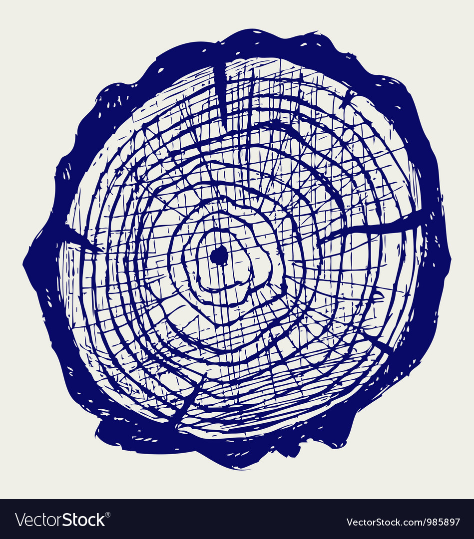 Cross section of tree stump vector | Price: 1 Credit (USD $1)