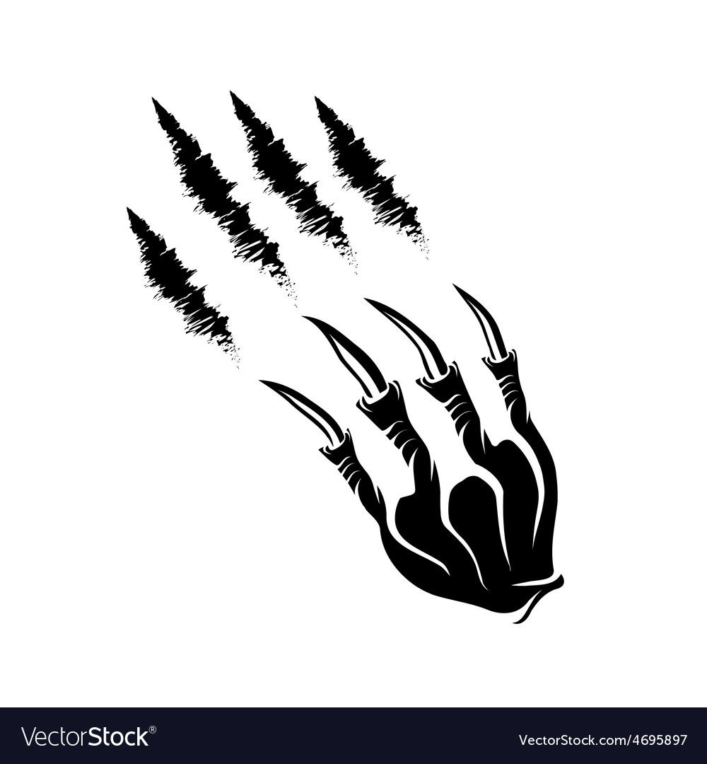 Monster claws and claws marks vector | Price: 1 Credit (USD $1)