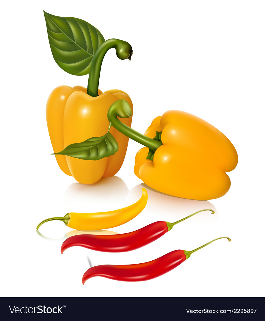 Set of chilli fruit stock vector | Price: 1 Credit (USD $1)