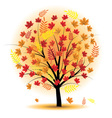 Beautiful autumn tree vector
