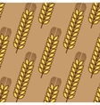Seamless pattern of wheat ears vector
