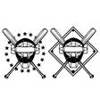 Baseball mask and crossed bats vector