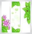 Set of bio concept design eco friendly banners vector