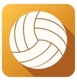 Sport icon with volleyball ball in flat style vector