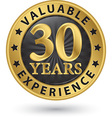 30 years valuable experience gold label vector