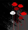 Floral background with poppies vector