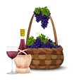 Wine grape and wine basket vector