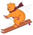 Teddy-bear skies vector