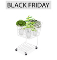 Green trees in black friday shopping cart vector