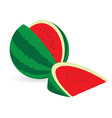Watermelons vector