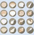 Sea shell flat icons set vector