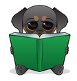 Dog book vector