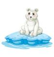 A polar bear above the iceberg vector
