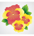 With flower bouquet on white background vector