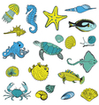 Sea life animals - hand drawn vector