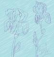 Iris flowers tile vector