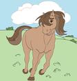 Adorable horse vector