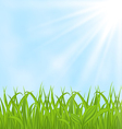 Spring background with green grass vector
