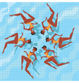 Synchronized swimmers vector
