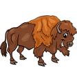 Bison american buffalo cartoon vector