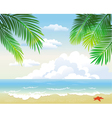 Tropical beach vector