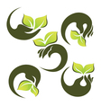 Hands and green leaves vector