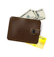 Leather wallet with dollars and a gold credit card vector