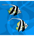 Cartoon two striped fish vector