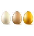 Three realistic eggs vector